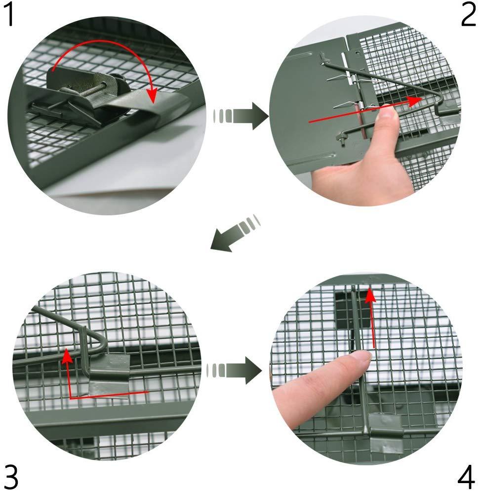 trappola a galleria per topi